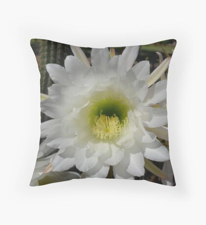Cactus Flower 2 Throw Pillow
