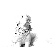La Blanca by Misti Love