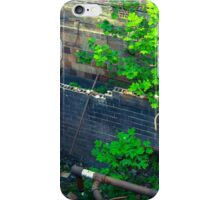Falling From Heights  iPhone Case/Skin