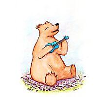 Ukulele Bear Photographic Print