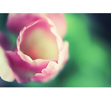 blooming happiness Photographic Print