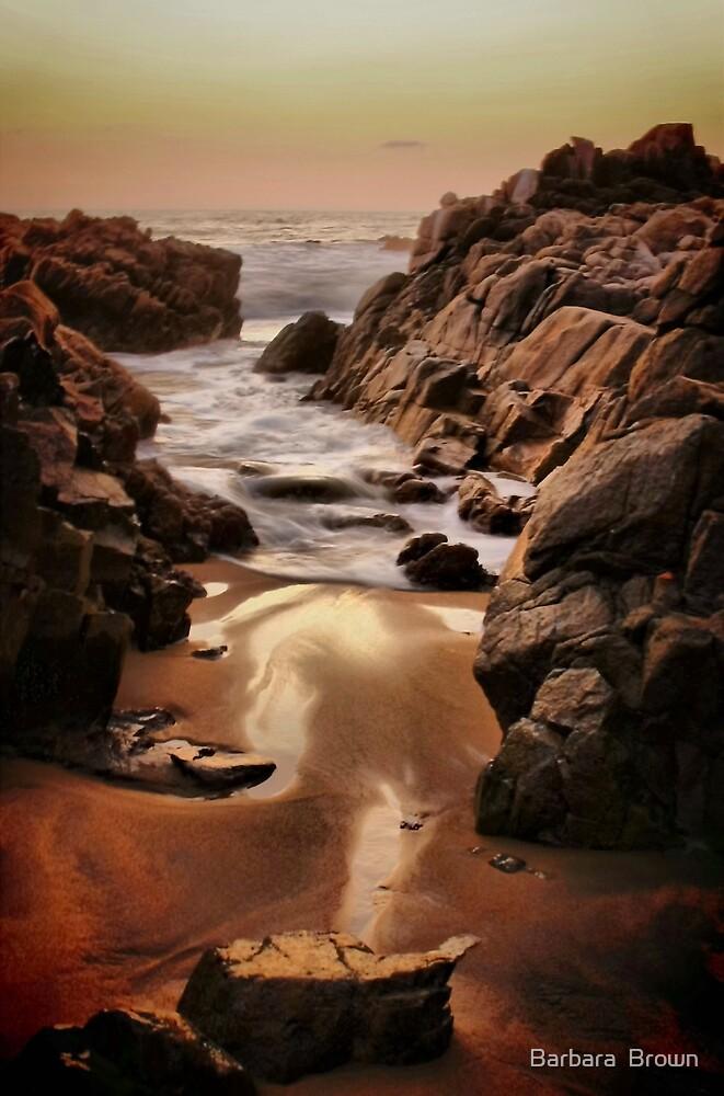 Eternal Sea by Barbara  Brown