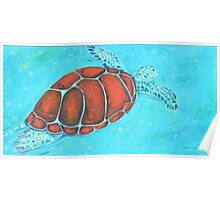 Turtle swimming in the ocean Poster