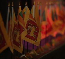 Sri Lanka Flags by Aravinda