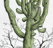 Arizona Saguaro art Sticker