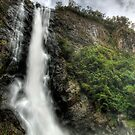 Ellenborough Falls by Matthew Jones