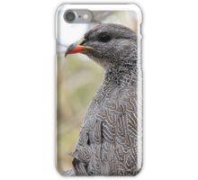 Spur Fowl iPhone Case/Skin