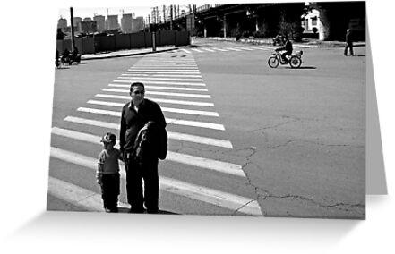 Crossing the Road by Danit Elgev