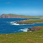 Ring of Kerry landscape Ireland by upthebanner