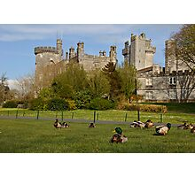 Dromoland Castle Duck walk! Photographic Print