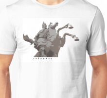 Warrior Horse Unisex T-Shirt