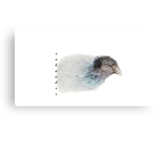 Eye Dove Canvas Print