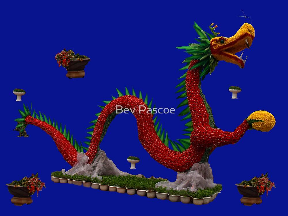 Floral Dragon in Le Thai Park, Hanoi Vietnam by Bev Pascoe