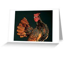Golden Seabright Cockbird Greeting Card