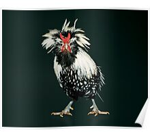 Bearded Silver Lace Polish Bantam Poster