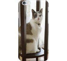 Egyptian Princess iPhone Case/Skin