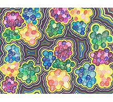 Flower Frenzy Photographic Print