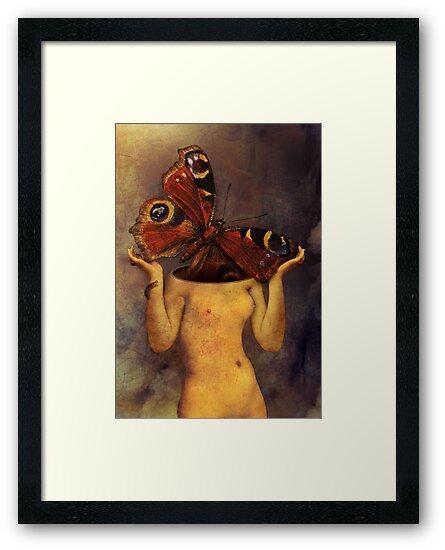 Cocoon by Catrin Welz-Stein