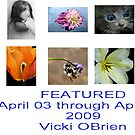 Featured April 03 to April 09 2009 by VickiOBrien