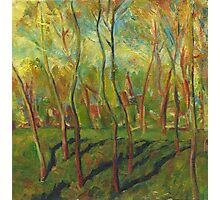 Claude Monet Trees in Winter (author's copy) Photographic Print