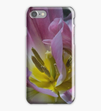Dwarf Double Murillo Tulip iPhone Case/Skin