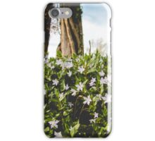 This is a spring Festival iPhone Case/Skin