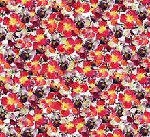 Red Pansy Floral by Mieke Manse