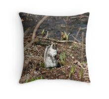 What?  I didn't do it! Throw Pillow