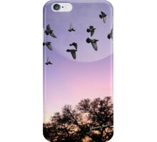 A Gathering of the Flock at Sunset iPhone Case/Skin