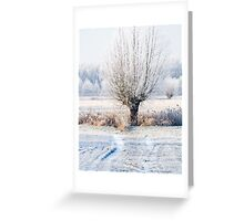 winter white willow (www) Greeting Card