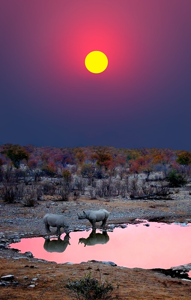 SUNSET WITH RHINOS by Michael Sheridan