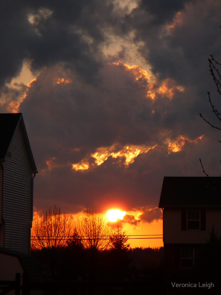 God's Gift to the Neighborhood by Veronica Schultz