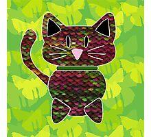knitty kat Photographic Print