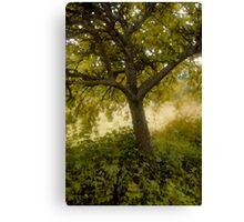 Pastel Tree Canvas Print