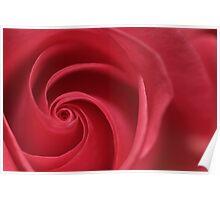 Rose Twirl Poster