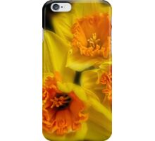 Daffodil time iPhone Case/Skin