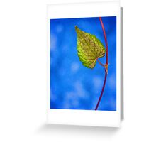 Hang in there! Greeting Card