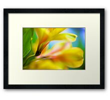 Experiments in Watercolor Framed Print