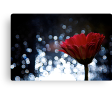 Experiments in Bokeh Canvas Print