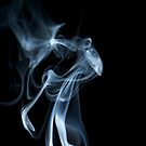 Up In Smoke by Friendly Photog