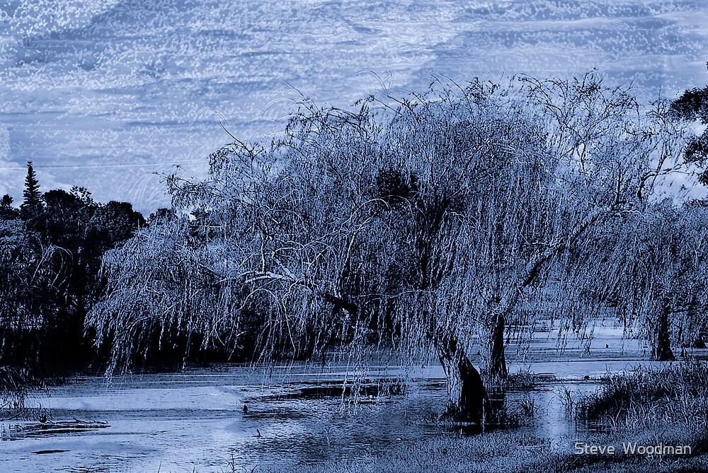 Blue Bayou by Steve  Woodman