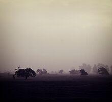 (mist) by Karen Strolia