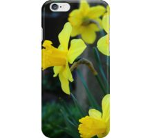 Greetings from my Spring Garden iPhone Case/Skin