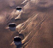 Throwing Stones by Lynda Berlin