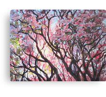 The Dogwood Tree Canvas Print