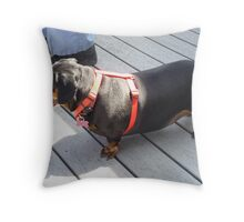 "Buster Ready To Go ""Bye-Bye"" Throw Pillow"