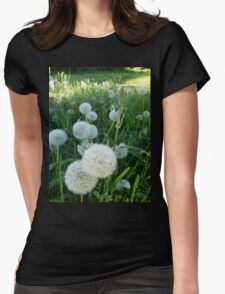 Dandelion Seed Heads In Our Pasture  Womens Fitted T-Shirt