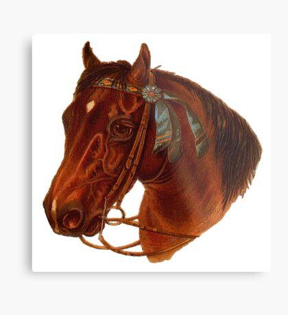 A Horse Metal Print