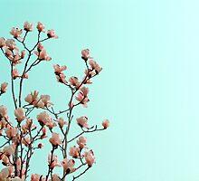 Spring by Danit Elgev