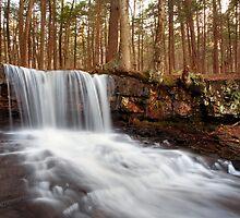The Top of Dutchman Falls by Gene Walls